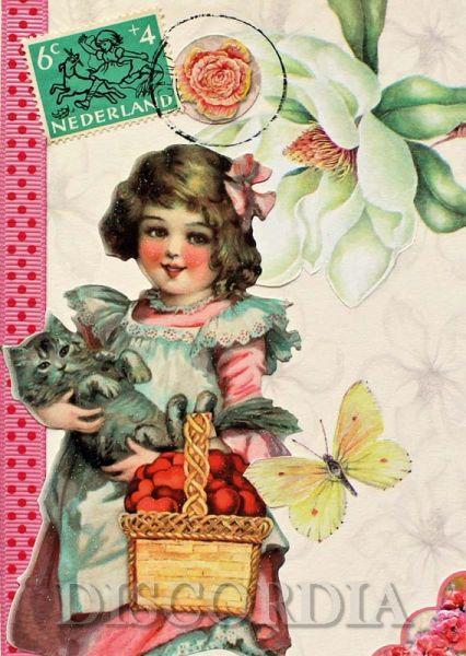 Postkarte AR15
